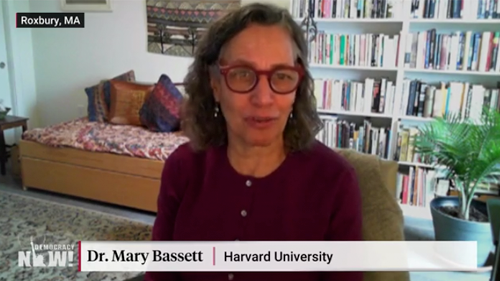 "Dr. Mary Bassett on ""Democracy Now!"""